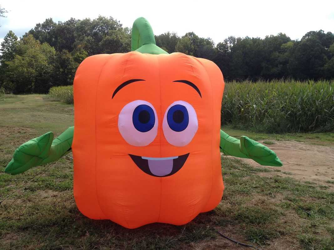 Spookley the Square Pumpkin at Donnell Century Farms