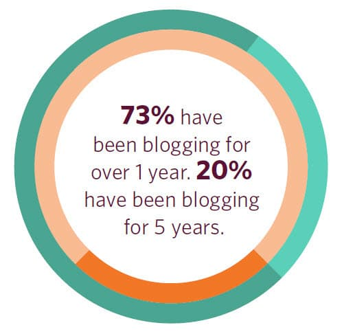 73 percent of Irish bloggers stated they have been blogging for more than a year